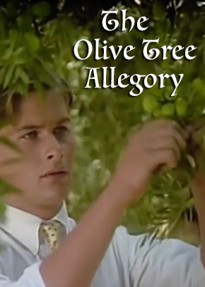 The Olive Tree Allegory